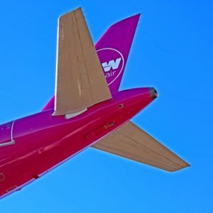 wow air tail logo