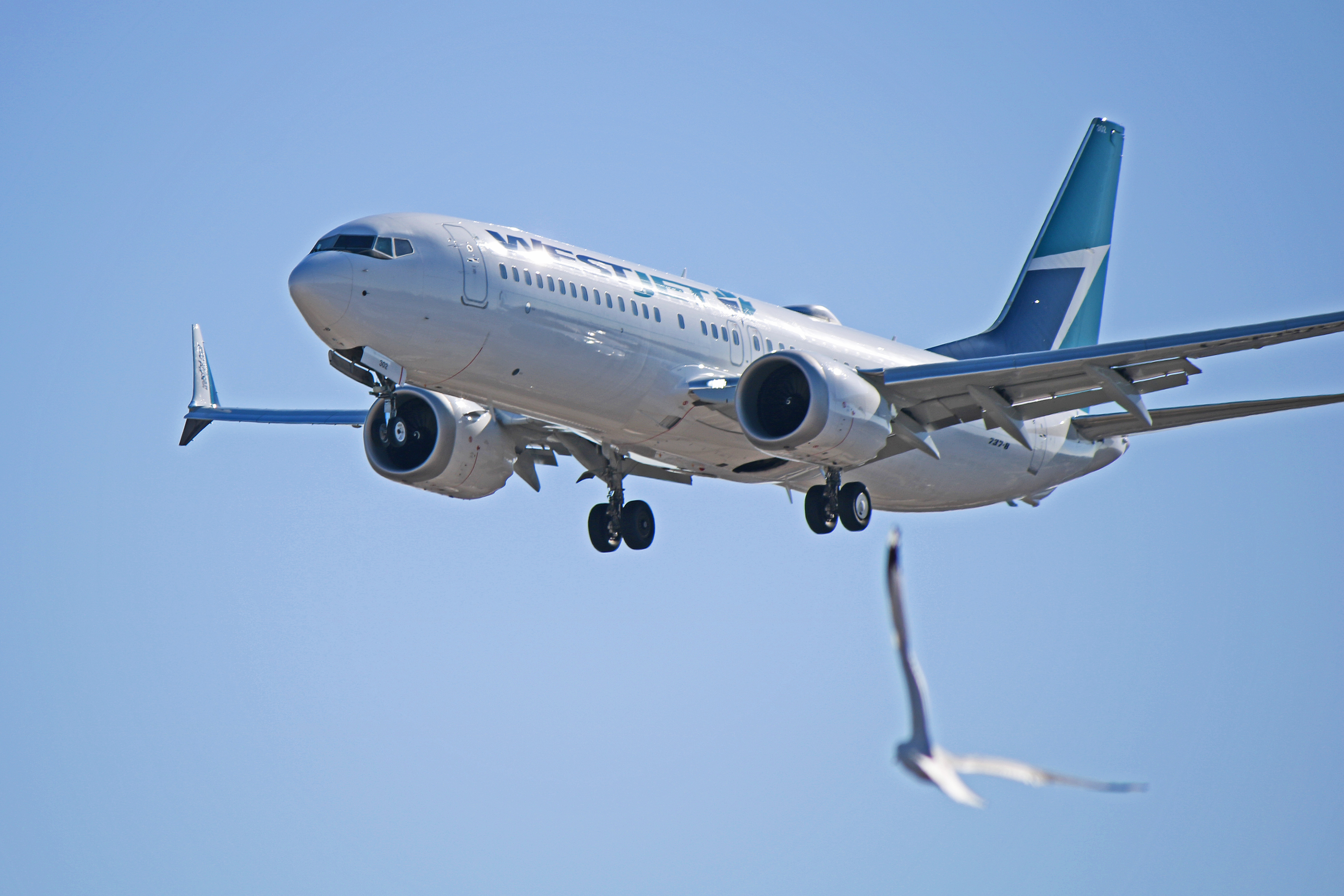 Boeing 737 800 Max: C-FNAX: WestJet Boeing 737 MAX 8 (The Reincarnation Of C-FNAX