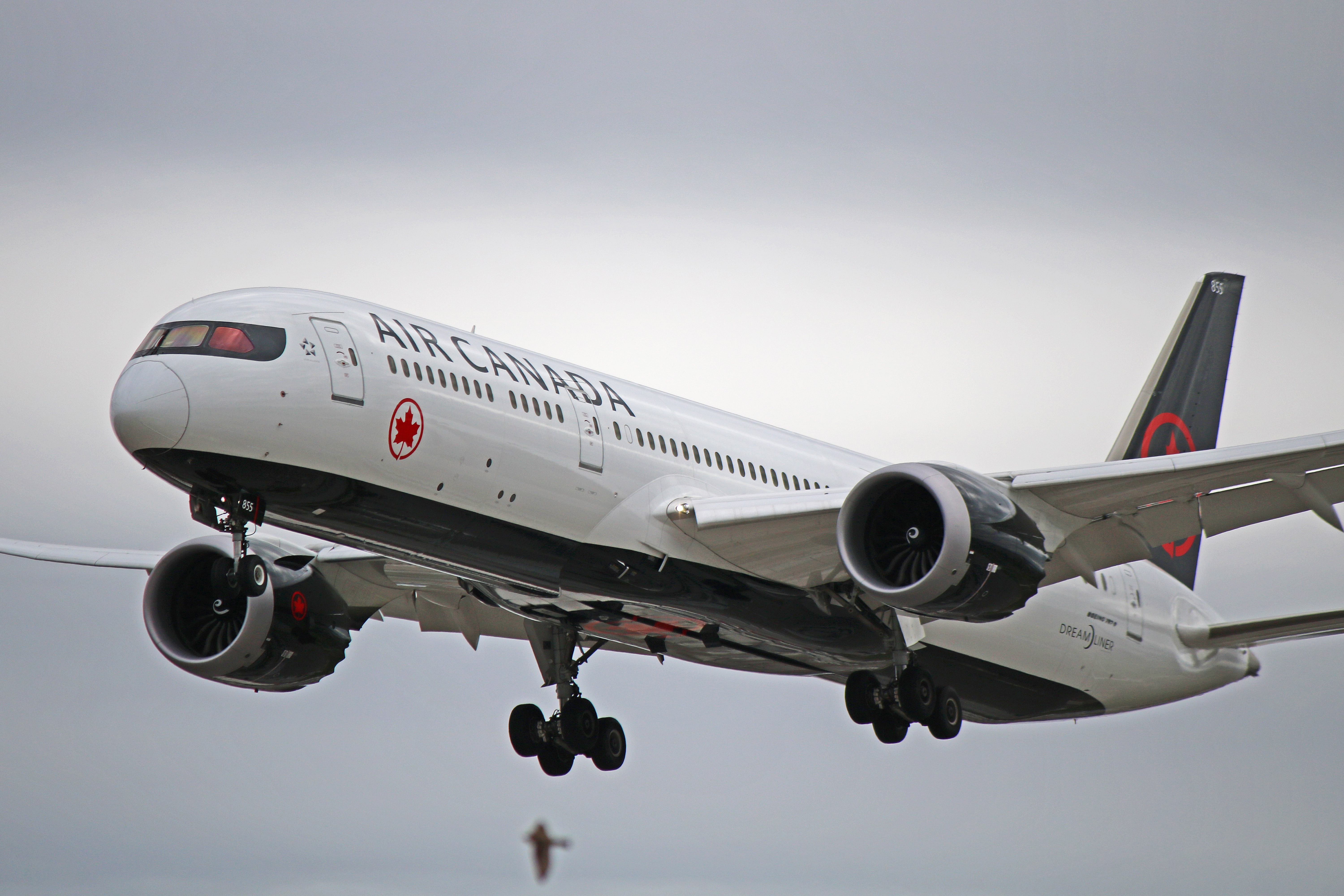 C-FVLX: Air Canada Boeing 787-9 Dreamliner (Don't Drop Your Cell)